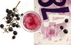 Sue Tallon - Clearly Kombucha - Classic Grape